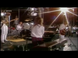 Rare  classic 60s  70s rock(the video experience)