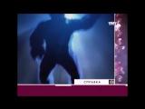 Человекообразная обезьяна (Сергей Дружко на все случаи жизнидля важных переговоровнеобъяснимо, но фактННФ)