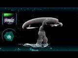 Digital X Predator (Abstract Vision Remix) Unique Sense Records