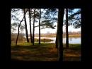 Белоруссия река Ипуть под Гомелем