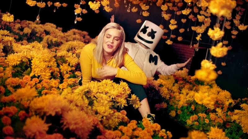 Marshmello Anne-Marie - FRIENDS [Alternative Music Video]