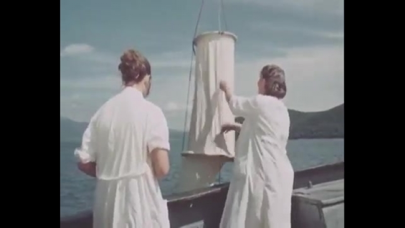 В Тихом океане.СССР. Моснаучфильм.1957 год.