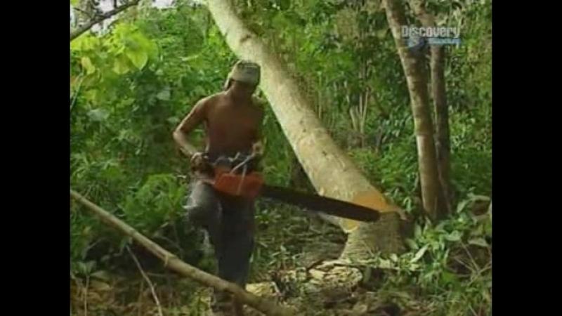 Саваи. Западное Самоа