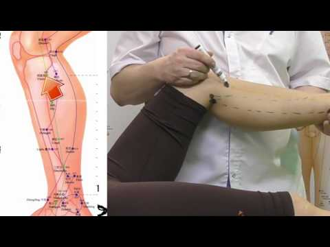 Секреты китайской медицины (45). Точка Инь линь цюань. Меридиан селезёнки-поджелудочной RP9.