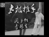 Янши тайцзицюань и туйшоу в исполнении ученика Ян Чэнфу - Ли Ясюаня 李雅轩