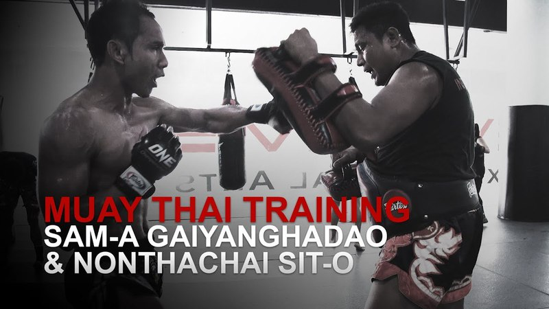 Muay Thai World Champion Sam-A Gaiyanghadao Destroys The Pads!