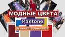 Модные цвета одежды ТРЕНДЫ осень-зима 2018-2019 от Pantone
