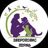 Зверополис-Пермь. Помощь животным