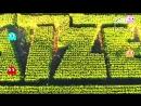 Кукурузное поле в виде лабиринта из Pac-Man