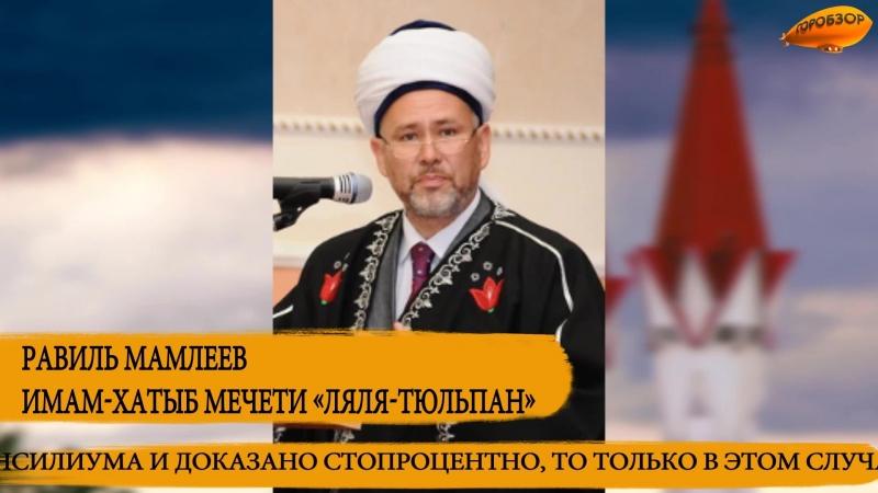 Имам-хатыб мечети «Ляля Тюльпан» Равиль Мамлеев об абортах: «Исламом они запрещены»