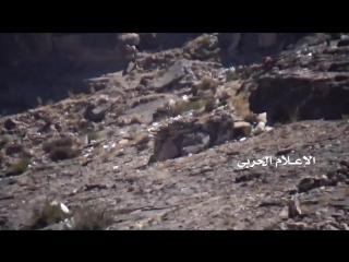 Снайперы хуситов застрелили 3 солдат армии Хади в районе Нихм.