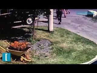 Подростки-вандалы уничтожили клумбу в Орехово-Зуеве - Подмосковье 2018 г