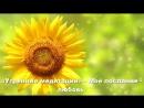 4.Утренние медитации - (Часть 4) Моё послание – любовь