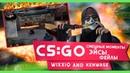 CS GO Смешные моменты Эйсы Фейлы