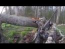 Приколы на охоте и рыбалке ! 3