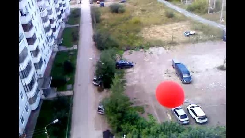 MOV10139 шарик бьётся за окном..не пускают его в дом