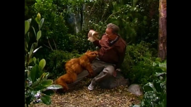 Alf Quote Season 1 Episode_11_Альф и Вилли