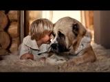Дети и Животные на Ферме 🐴- Моменты с Детьми и Животными 🐷- Смешное видео! 🐣