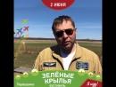 Зелёные Крылья 2018 Минигулов пилот