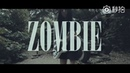 Bass Vocal cover 《The Cranberries Zombie》