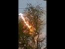 Замыкание через крону дерева
