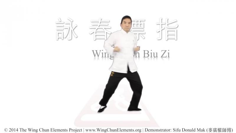 Wing Chun Biu Zi Form (詠春標指)