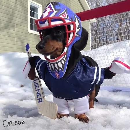 Crusoe Goalie Practice!