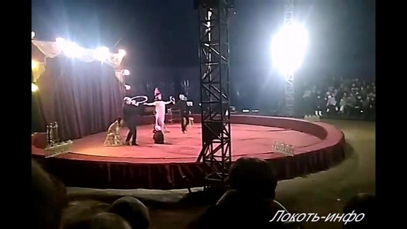 Цирк-шапито п.Локоть 13.01.2018