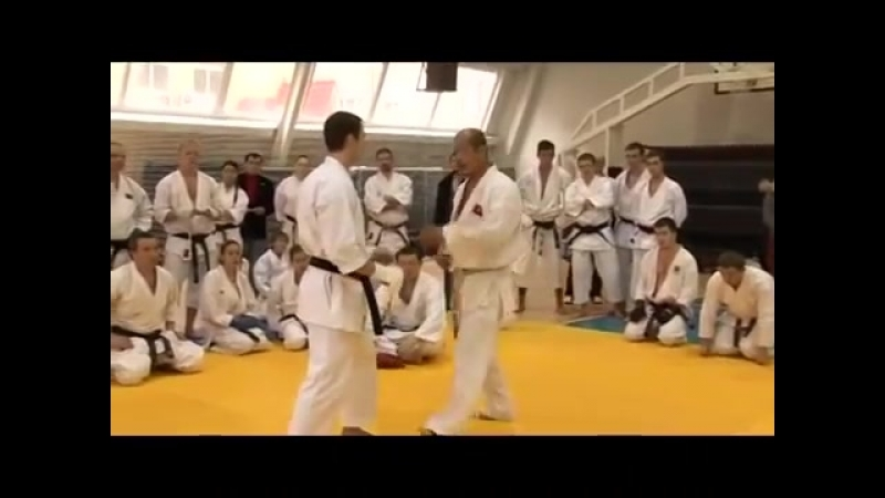 Karate Seiji Nishimura. Seminar in Moscow 2008 (2/6)