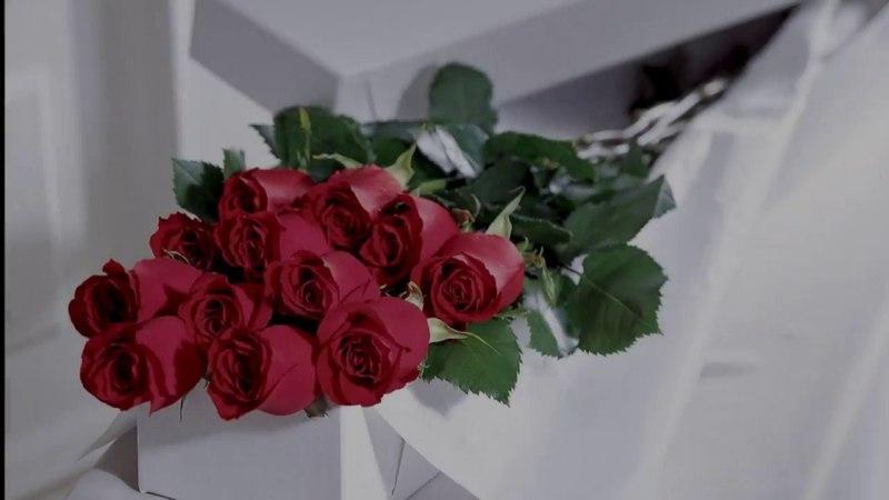 Забытые розы ALEKSEY PONOMAREV/ Aleksey Zhigachev