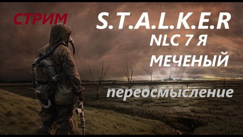S.T.A.L.K.E.R nlc 7 я меченый переосмысление стрим онлайн 35