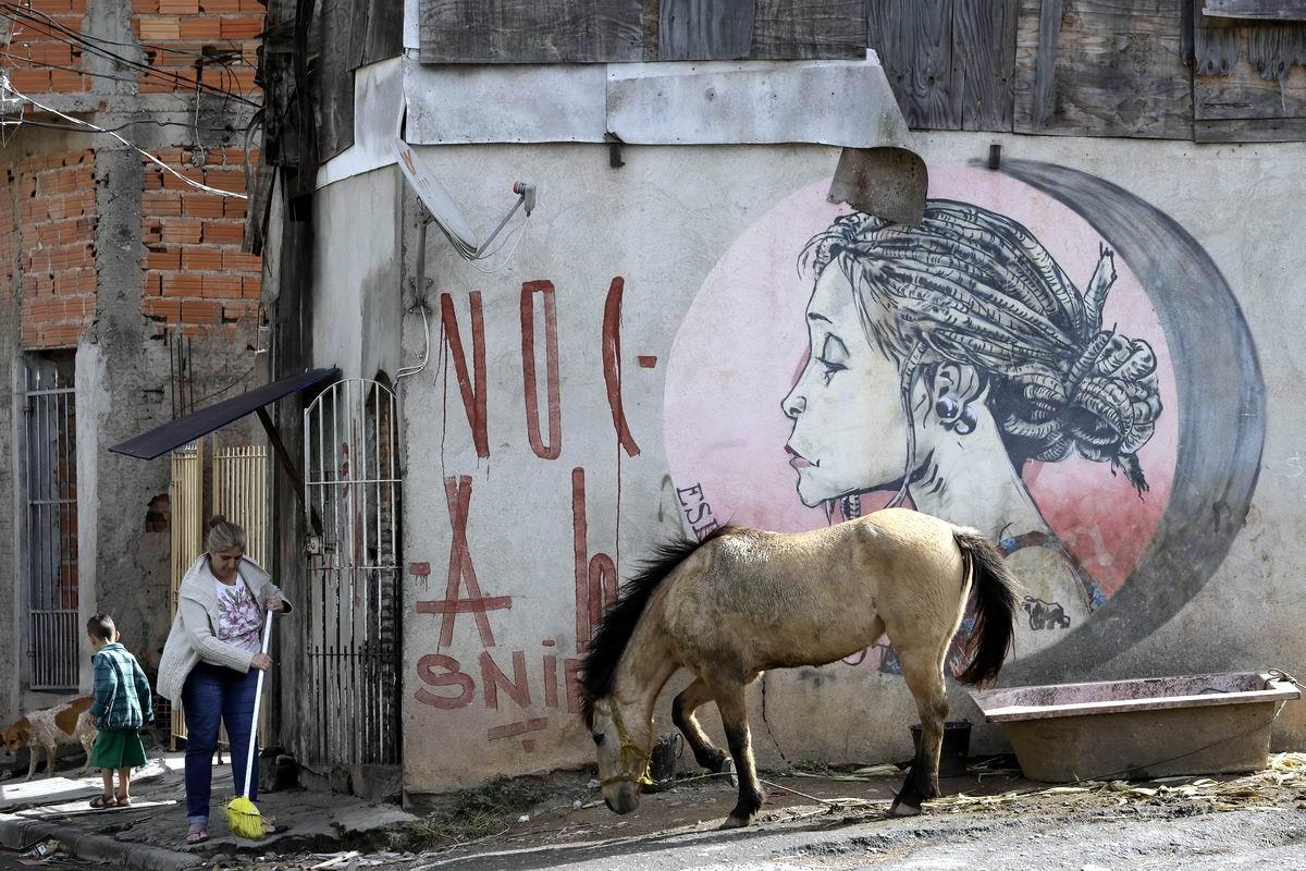 Красавица с лошадью у старого корыта: Все краски жизни в трущобах бразильского Сан-Паулу