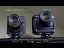 Canon 120MXS 120MP CMOS Sensor
