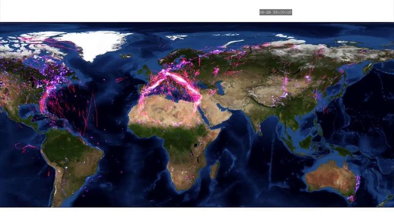 Миграции животных видимо морских и птиц по данным gps треккеров