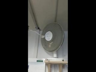 Ein Ventilator meines vertrauens