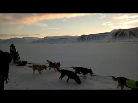 A Student's Life on Svalbard 2015