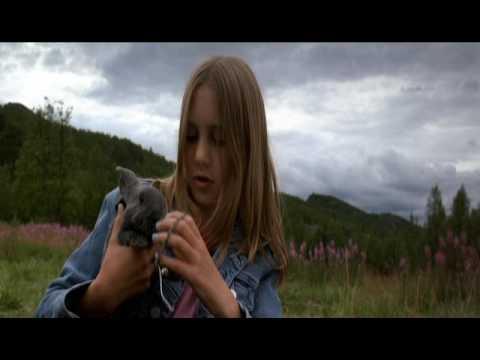 MISA A VLK 2003 Drama / Rodinný CZ Dabing