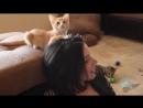 Stoya kittens