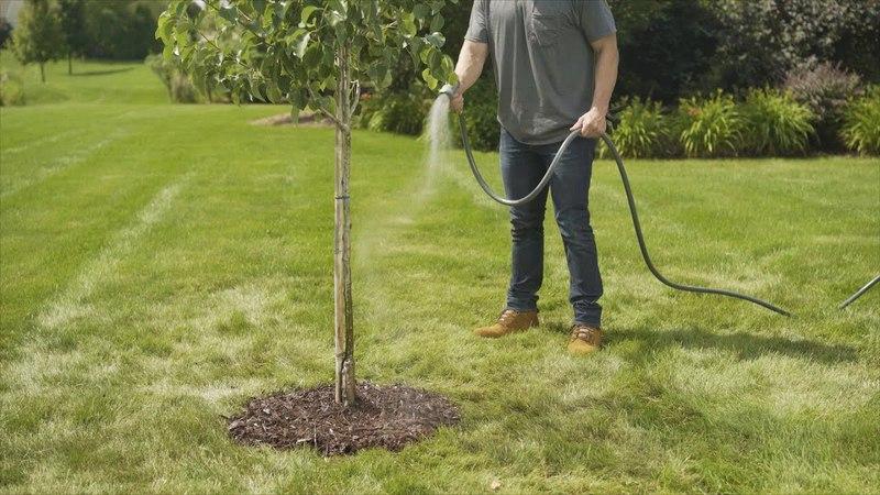 Fiskars® - How To Plant a Tree