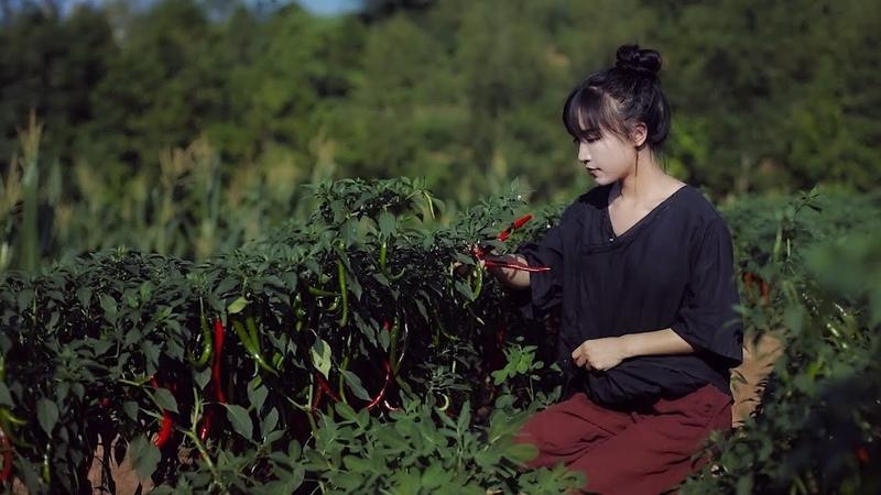 川菜之魂——豆瓣酱