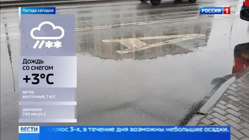 Весна в декабре_ погода в столице на 6 градусов теплее нормы - Россия 24
