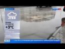 Весна в декабре погода в столице на 6 градусов теплее нормы Россия 24