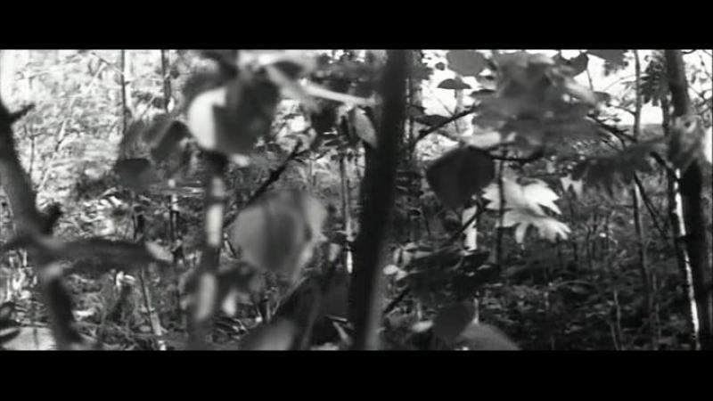 A.Zori.Zdesj.Tikie.(2.seriya.iz.2).1972.DivX.DVDRip-Sidak