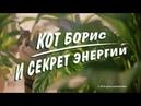 Даниил Маргушев в роли хозяина кота Бориса самого узнаваемого талисмана из телевизионной рекламы народной марки корма для кошек Kitekat®