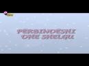 Winx Club - Sezoni 1 Episodi 11 - Përbindëshi dhe shelgu - EPISODI I PLOTË