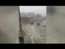 Китайцев рассмешила скользящая корова на льду