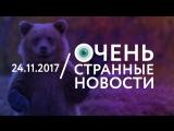 24.11 | ОСН #7. Медведь украл у охотника два ружья