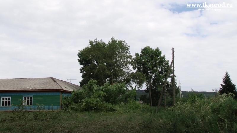 Возле больницы в Калтуке спили угрожавшее медучреждению тополя Август 2018 Братск
