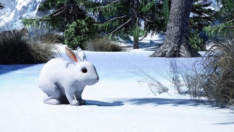 Как заяц зимой живет Детям про животных.