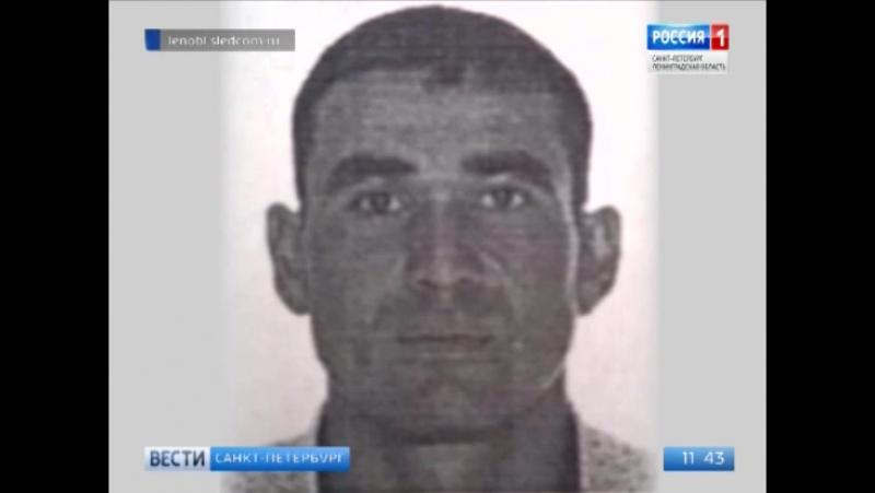 Областной Следственный комитет составил фоторобот подозреваемого в тройном убийстве в Токсово